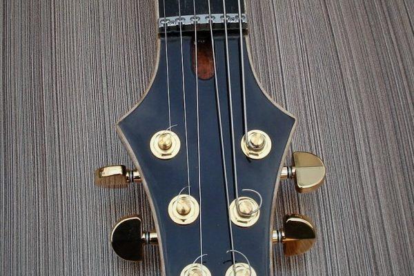 Paradise – Изготовление гитар на заказ