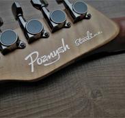 Этапы становления Poznysh Guitars
