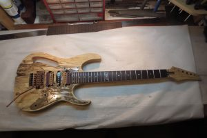 Ibanez Custom JEM Tribute Russian Edition 30th Anniversary Extra Hard Relic